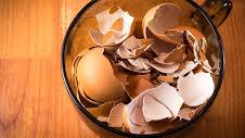 بعد قراءة هذا الخبر… لن ترمي قشور البيض أبداً