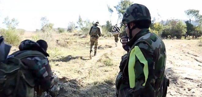 """الجيش يقضي على إرهابيين من """"جبهة النصرة"""" و""""داعش"""" في ريفي حماة وحمص ودرعا البلد"""