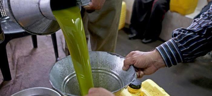كيف تعرف زيت الزيتون المغشوش من الطبيعي