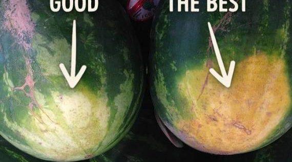 كيف يمكننا اختيار البطيخ الألذ..اليكم هذه الطريقة!