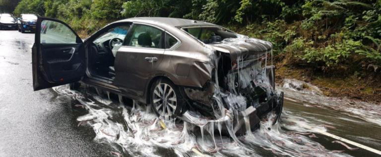 مشهد من أفلام الخيال العلمي.. ما الذي حصل لهذه السيارة؟