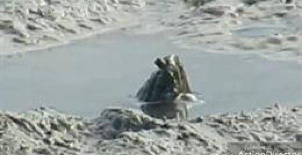 بالفيديو- رصد كائن غامض في النهر يثير الرعب!