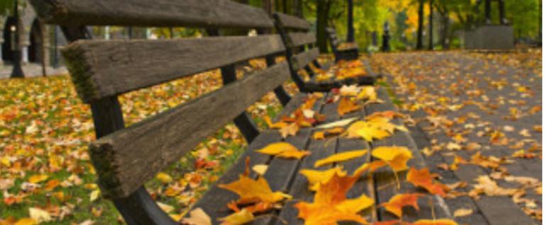 الخريف على الأبواب.. الكتل الحارّة تنحسر وتعود الجمعة!