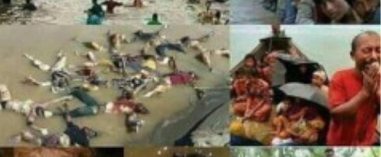 """مأساة مسلمي """"الروهينغا"""" أزمة ضمير غائب!"""