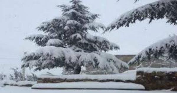 الثلوج تغطي جرود الضنية ابتداء من 1800 متر
