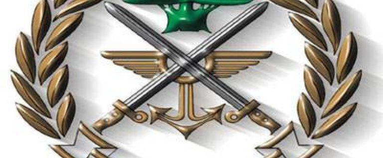 توقيف 121 سورياً في مخيم وادي الأرانب عرسال