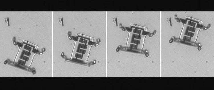 روبوتات مجهرية لنقل الدواء إلى جميع مناطق الجسم