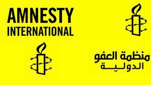 """منظمة العفو الدولية تتهم البحرين باستغلال الفورمولا 1 بهدف """"تلميع"""" صورتها"""