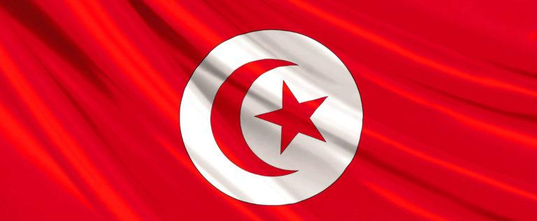 سعيد والقروي الى الدورة الثانية من انتخابات تونس الرئاسية