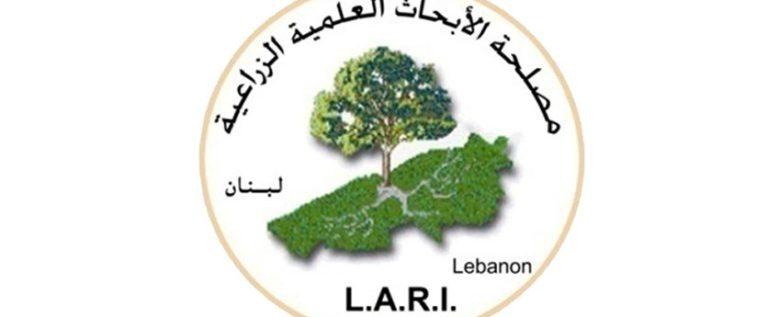 الأبحاث الزراعية: لا جراد حاليا في لبنان وجواره